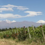 Experiencing Wine Hotels in Valle de Uco, Argentina