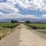 Hotel Review: Posada Salentein in Valle de Uco, Argentina