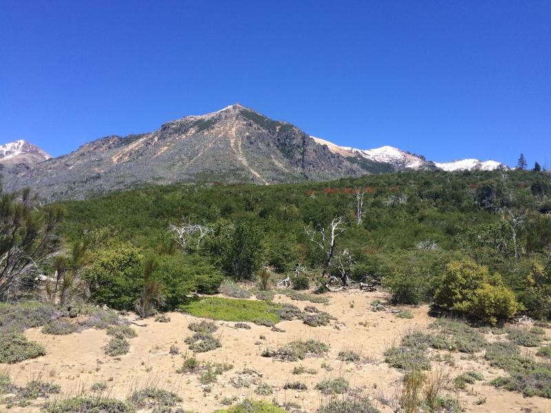 bariloche volcanic ash