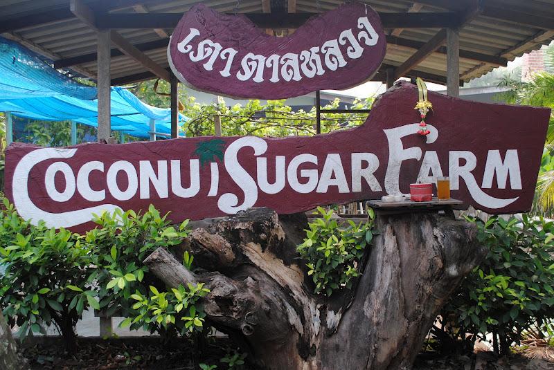 Visiting The Coconut Sugar Farm In Samut Songkhram